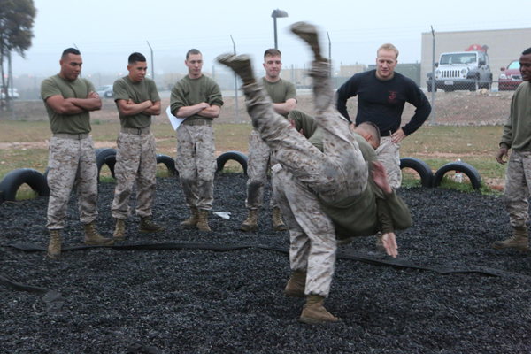 Marine Corps Martial Arts Program (MCMAP)